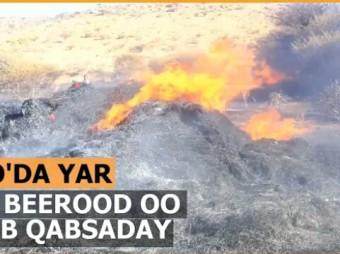 Dab Khasaare Gaadhsiiyay 48 Beerood Oo Kuyaala Deegaanka Goada Wayn+ Muuqaal