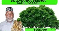 Hambalyo Iyo Taageero Ku Socota Caleema-saarka Suldaan Maxamed Cabdilaahi Axmed (Sul.Maxamed Ciroole)