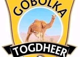 Xulka Gobolka Togdheer Oo Laga Mamnuucay Ciyaaraha Gobollada Somaliland Muddo 4 Sanadood Ah +  Sababta